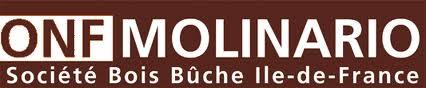logo Molinario 2